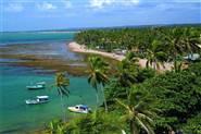 Nuove Case In Lista Per Praia do Forte - Novembre 2017