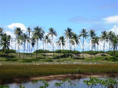 Area 51 hectares Seaside