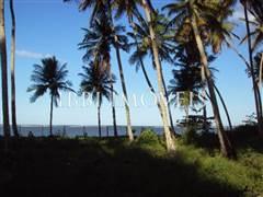 Lote junto a la playa 4