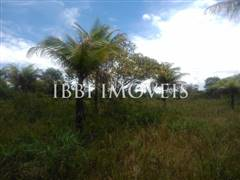 Site Well Located With Access To Pitinga Beach Club Med / Land View 7