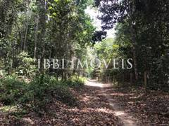 Land with great location and preserved vegetation. 6