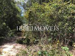 Land with great location and preserved vegetation. 7