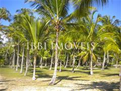 Plot In Gated Community Foot In Sand On Guaiú Beach With Full Infrastructure 5