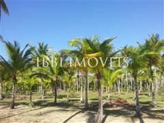 Land To Ocean Front Resort 4