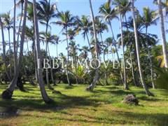 Land To Ocean Front Resort 5