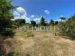 Flat land located 700m from the center. 6